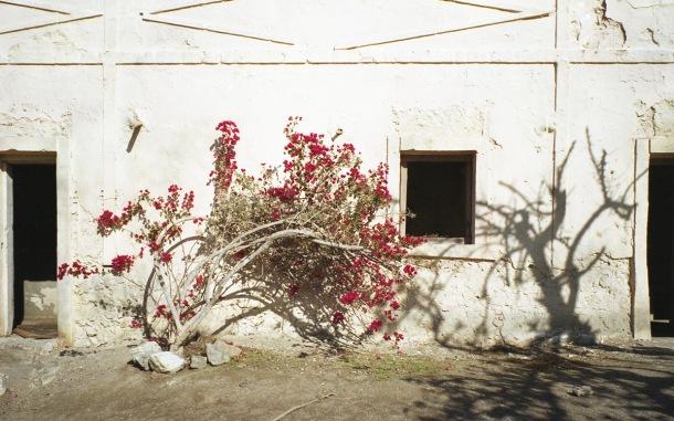 © Paloma Ruiz