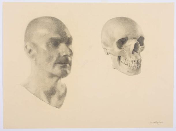 © Laura Rikman - Estudio de anatomía