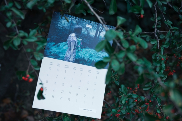 Calendario 2016 - © Irene Cruz / annitaklimt