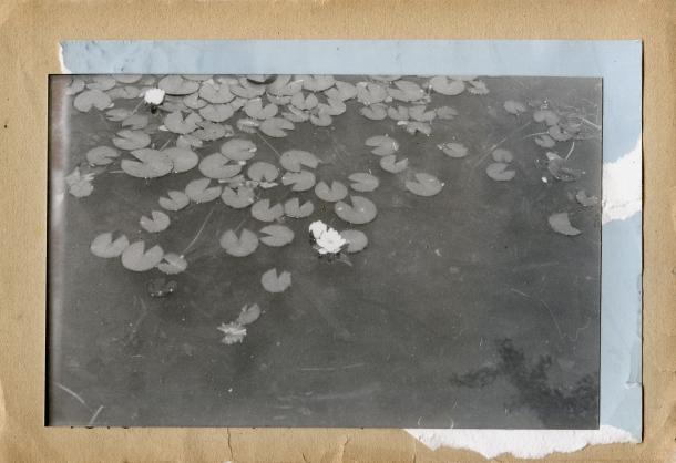 © Eva Herrero - el espejo de la fuente - Ropa Tendida Fanzine- Agua