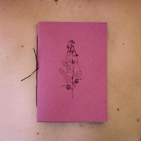 Estraloque, segundo fanzine de la ColecciónGrieta