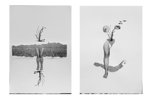 © Luana Fischer