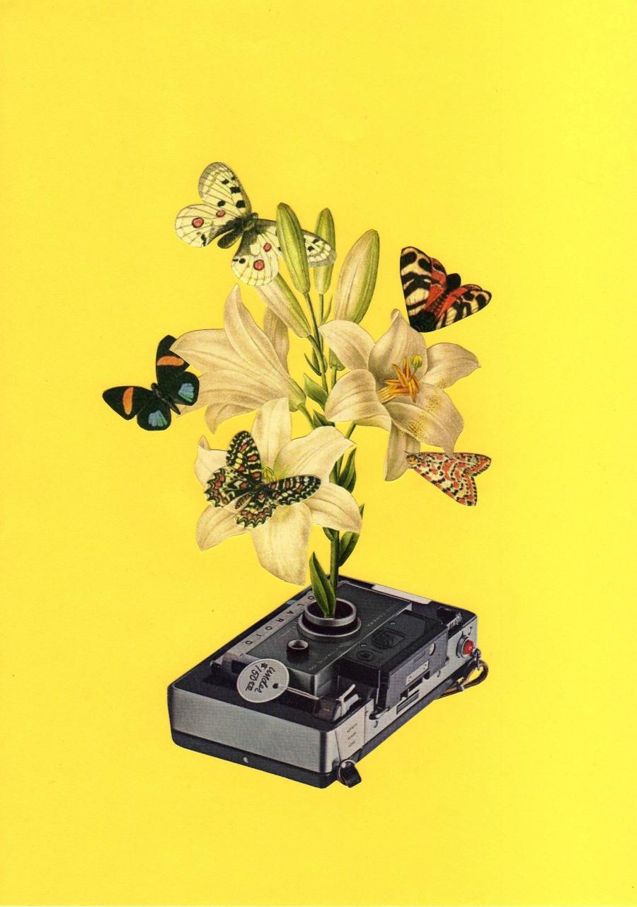 © Retrollage - Quién dijo que las polaroid debían morir