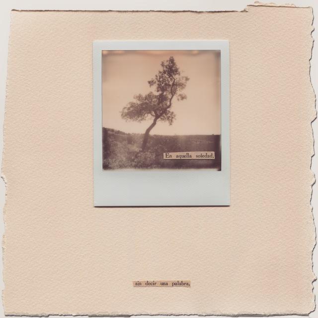 © Polaroid de Natalia Romay - En aquella soledad