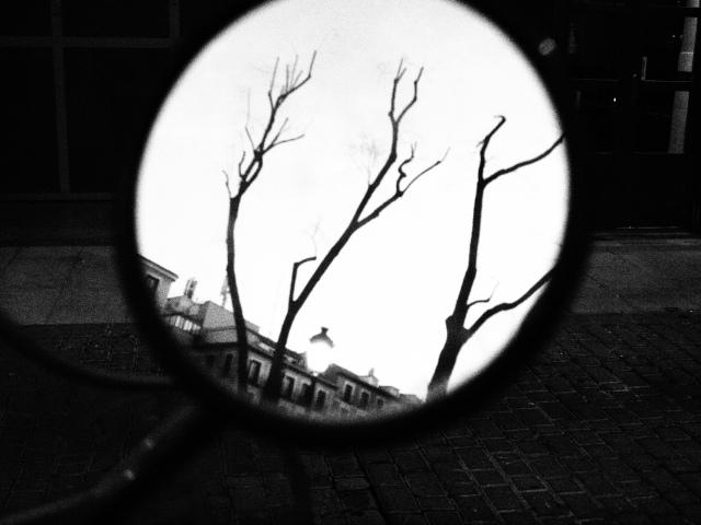 © Julia Manrique - Olympus Digital Camera