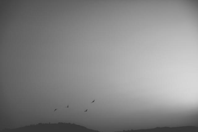 © Sara Yun - Where is paradise