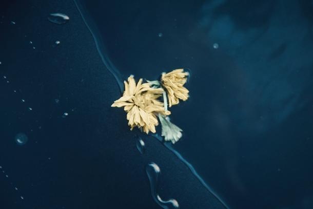 """© Irene Cruz - De la serie """"Drowning in Blue"""""""
