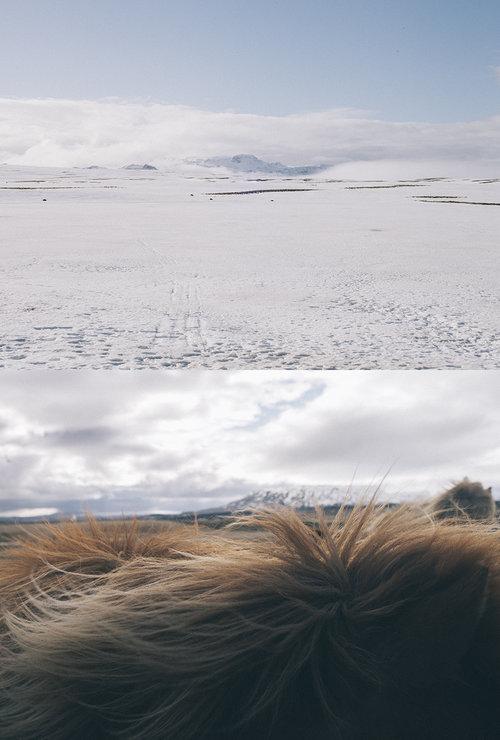 © Pedro J. Saavedra - Islandia