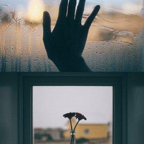'Islandia' de Pedro J.Saavedra