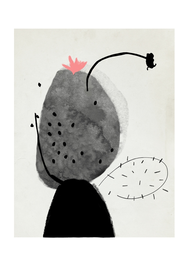 © Sylvia Takken - Cacti