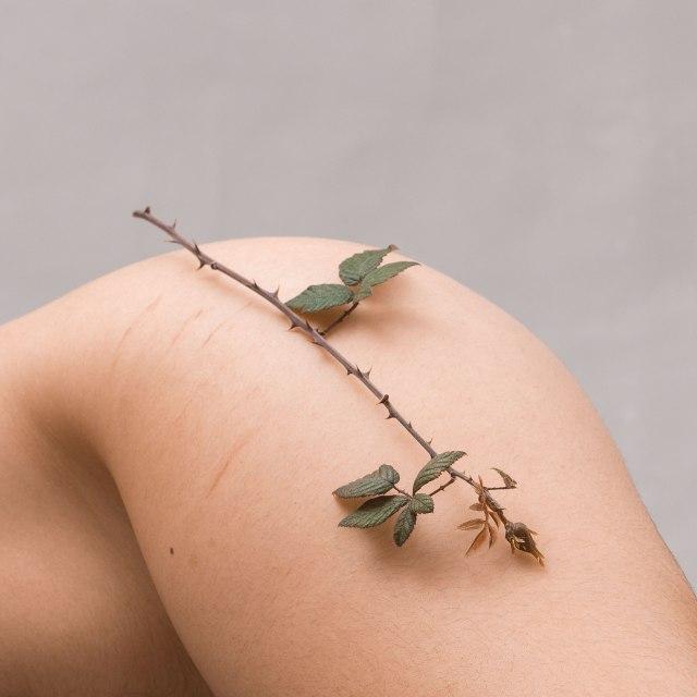 © Silvia Quiñones - In Bloom