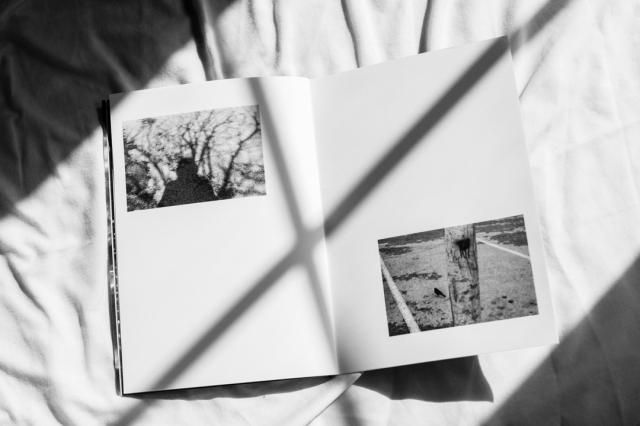 © Julien Rose - Sonora